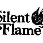 Silent Flame Stove Parts